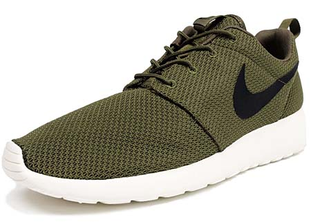 NIKE NIKE ROSHE RUN [IGUANA/BLACK-SAIL] 511881-201 画像
