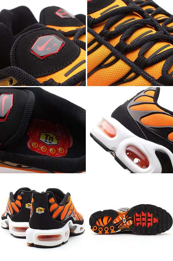 NIKE AIR MAX PLUS [BRIGHT CERAMIC/RESIN-PMNT-BLCK] 604133-886