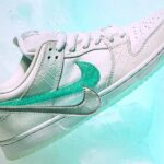 NIKE DUNK LOW PRO SB DIAMOND SUPPLY CO TIFFANY WHITE [WHITE / CHROME / WHITE / TROPICAL TWIST] (bv1310-100)